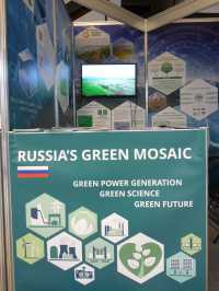 Russia's green mosaic